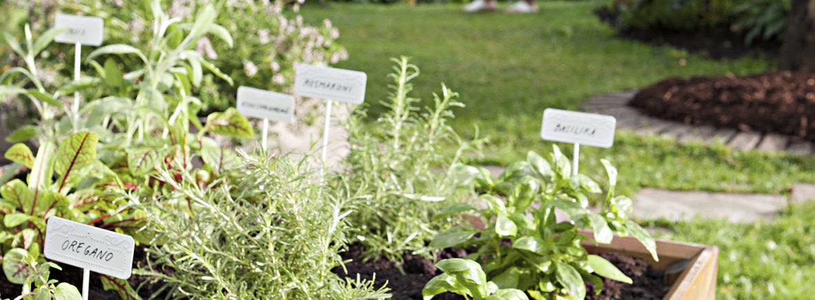 Kompostieliksiiri Puutarha ja Bio