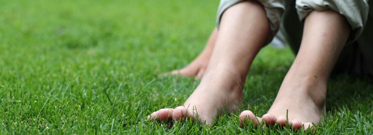Kalkitse nurmikko keväällä