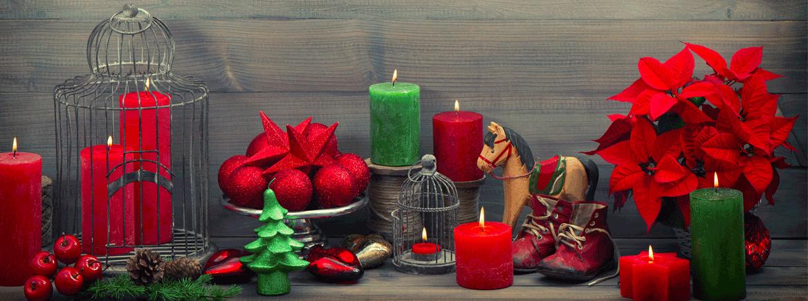 6 asiaa joulutähden istuttamisesta, jotka sinun pitää tietää!