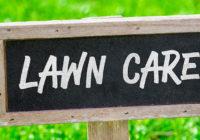 nurmikon kunnostus oikeilla tuotteilla on helppoa