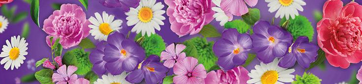 lila kukkapalkki greencare